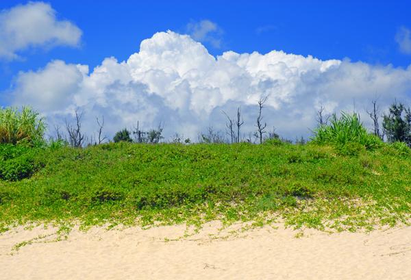 孤島の発見